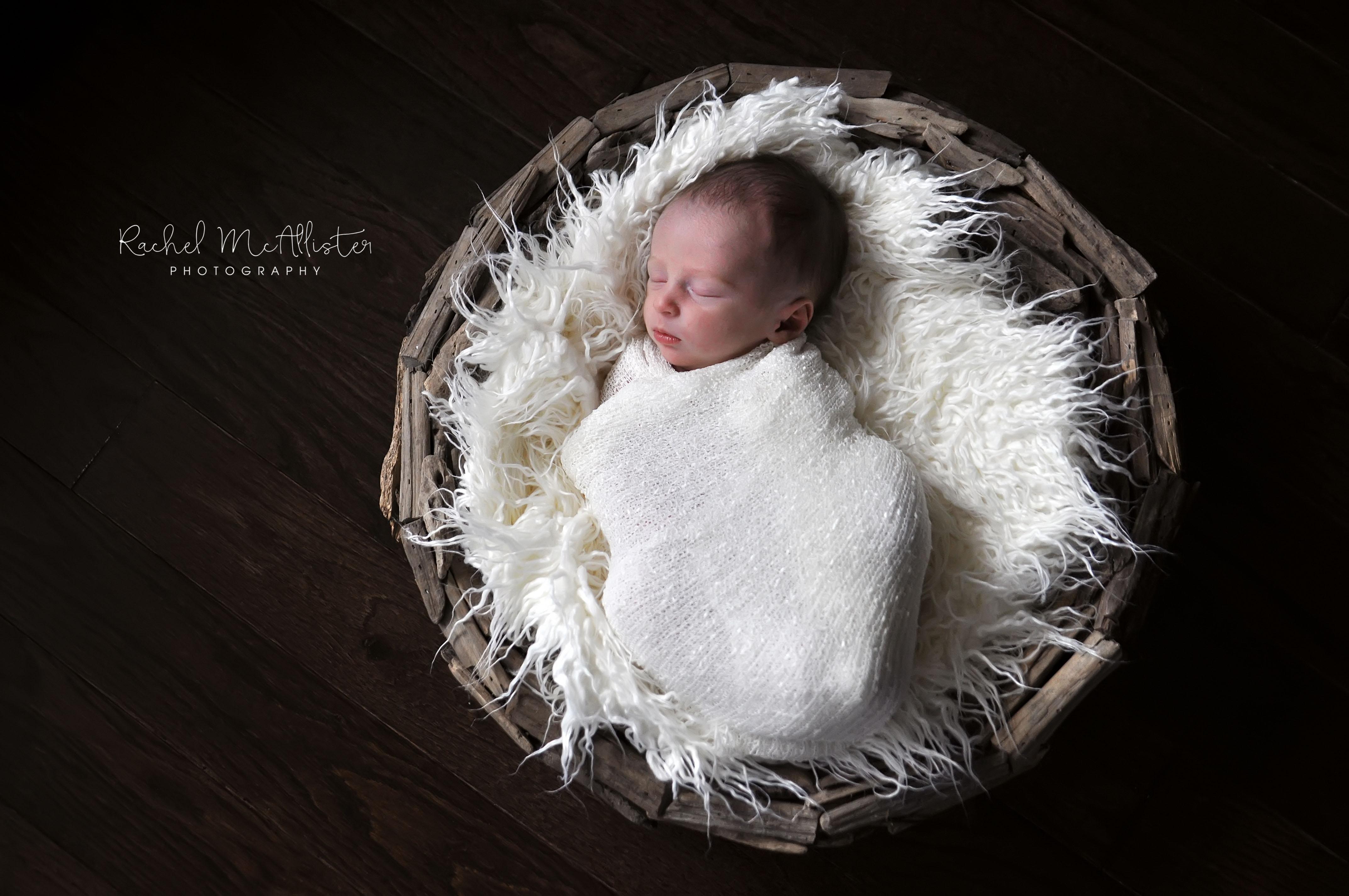 field newborn | chicago western suburbs newborn photographer