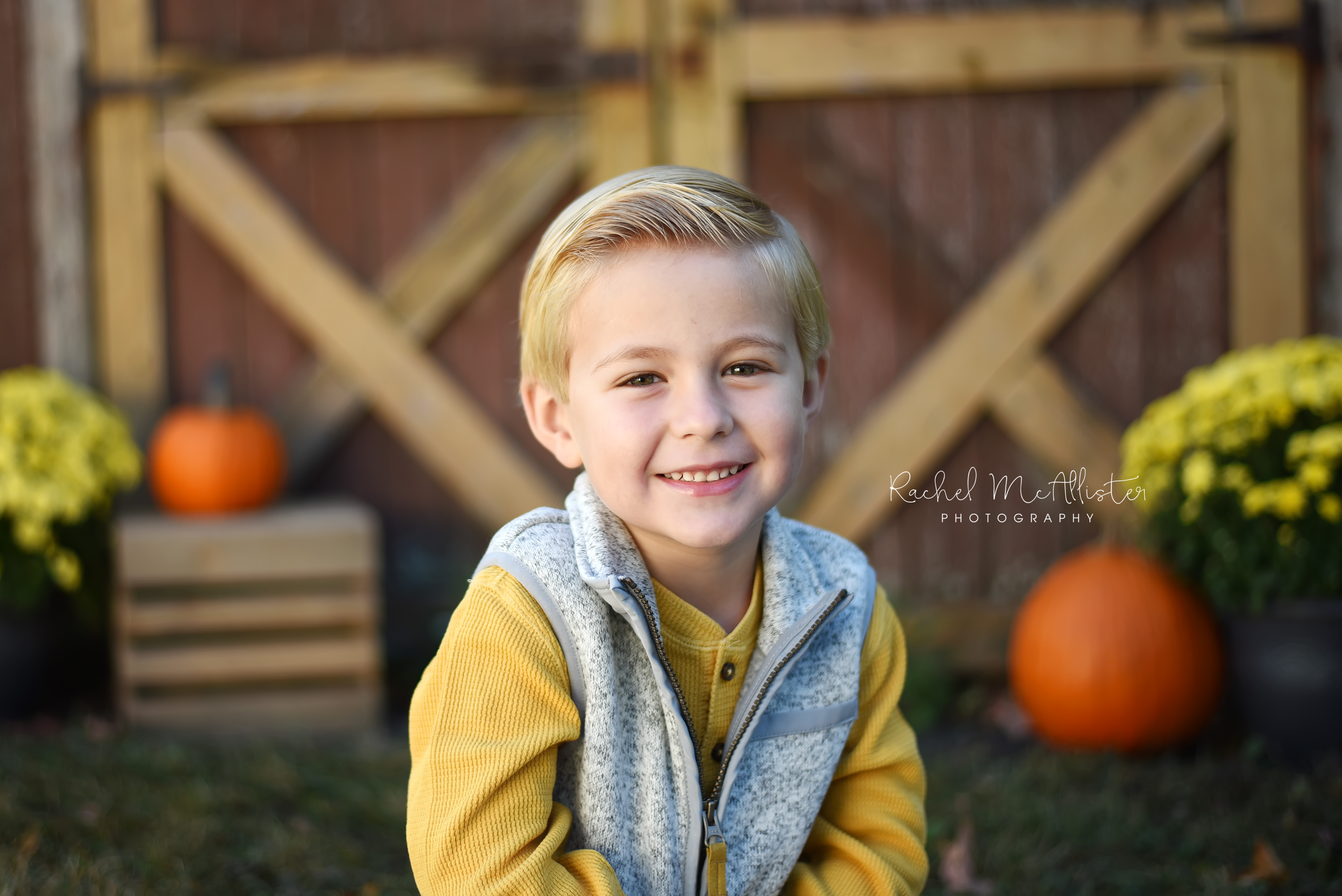 fall mini sessions | chicago western suburbs photographer