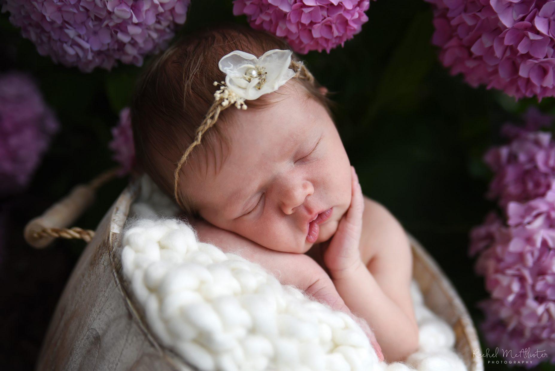 Southwick Newborn