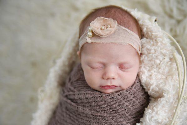 Newton Newborn
